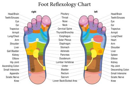reflexologymap